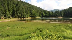Lake Synevir in Carpathian Mountains of Ukraine Stock Footage