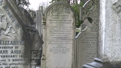 The grave of Eleanor Rigby, St Peter's Church cemetery, Liverpool, UK. Stock Footage