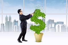 Person manage the growth of money tree - stock photo