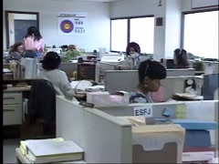 Stock Video Footage of 1980's or early 1990's women office workers in cubicles