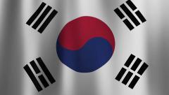 Flag of South Korea Blows Slowly in the Wind Stock Footage