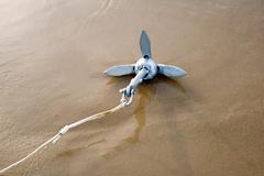 anchor - stock photo