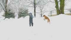 Slow motion snow ball being thrown at boy and his dog Stock Footage