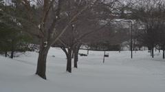 Winter trees blizzard snow storm wintertime 4k Stock Footage