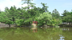 Japanese Lake With Forest Trees And Red Torii Gate Reflections In Water Stock Footage