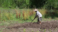 Video 1920x1080 - Old woman farmer holding spade at field. Bali, Indonesia. Stock Footage