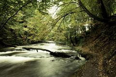 desaturated landscape with river - stock photo