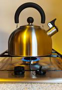 Stovetop whistling kettle Stock Photos