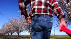 Almond Orchard, learning the trade Stock Footage