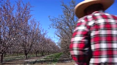 Almond Orchard, Grandfather and grandson beehives Stock Footage