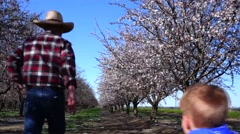 Almond Orchard, boy running eager to learn Stock Footage