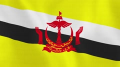 Loopable: Flag of Brunei Darussalam - stock footage