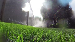 Oscillating lawn sprinkler watering grass in backyard - stock footage