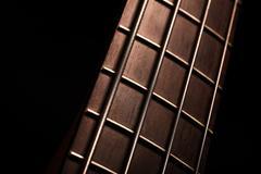 Bass fret board Stock Photos