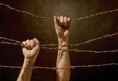 Hands hanging on the barbed wire Stock Photos