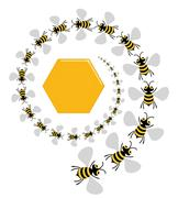 Bee Spiral - stock illustration