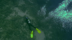 Diver swimming near reef in ocean - stock footage