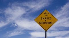 4K Time lapse zoom in snake warning Stock Footage