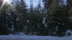 Tracking shot of snowy forest with sunrays Stock Footage