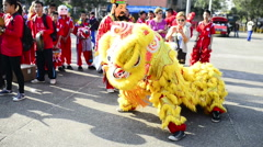 Yellow Chinese New Year Lion Stock Footage
