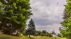 Motion time-lapse of tree and moody sky. Stock Footage