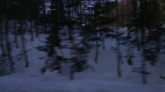 Ride shot of forest in winter Stock Footage