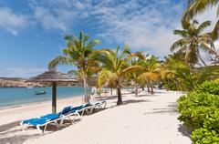 A Sunny Caribbean Beach with Sunloungers and Umbrellas Kuvituskuvat