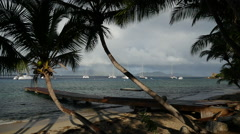 Palm trees in the foreground sailboats anchored in the distance BVI. - stock footage