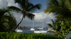 Sailboats anchored off Cooper Island BVI Stock Footage