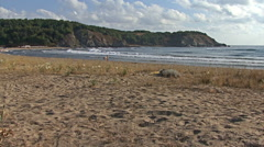 Summer beach coast with blue sky and nobody on the sand. Stock Footage