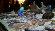 Stock Video Footage of Fish market