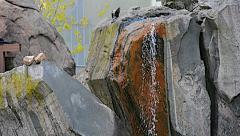 Fountain outdoor summer birds 01svv Stock Footage