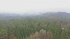 AERIAL: Flying over misty autumn forest Stock Footage