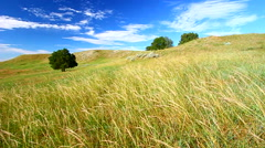 Prairie Breeze South Dakota Stock Footage