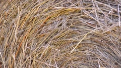 Hay roll in field summer 07CUzoom outsvv Stock Footage