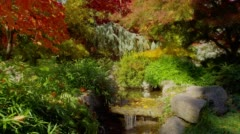 Little waterfall in pond with fall leaves, Ashland Stock Footage