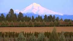 Sunset light illuminates Mt. Hood, Oregon. Stock Footage