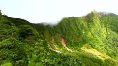 Saint Kitts Rainforest Crater Stock Footage