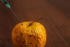 Hormone Apple on the Wood - stock photo