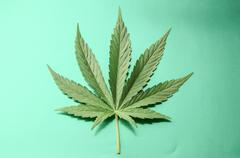 Cannabis Leaf Kuvituskuvat