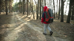 Child Walking in Adventure on Mountain Trails, Paths , hiking with backpack - stock footage