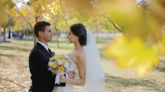 Bride and groom kiss under yellow leaves - stock footage