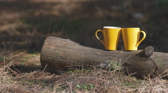Two yellow cups on the log. Background for web site. Stock Footage