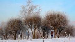 Cross-country skiing in the snow, frosty, sunny day in the snow-covered park Stock Footage