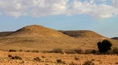 Negev Desert 3 Stock Footage
