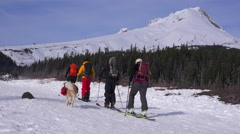 Cross country skiers and their St. Bernard dog prepare to trek to Mt. Hood, Stock Footage