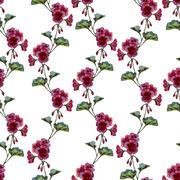 Geranium pattern - stock illustration