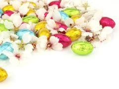 Chocolate Easter eggs with spring flowers Stock Photos