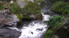 Golden stream in Zhangjiajie National Park, China. Stock Footage