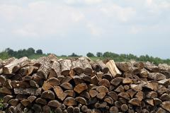 Close up of stacks of chopped logs Stock Photos
